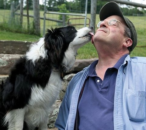 Jon Katz e seu border collie