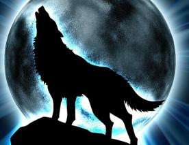 lobo ripper