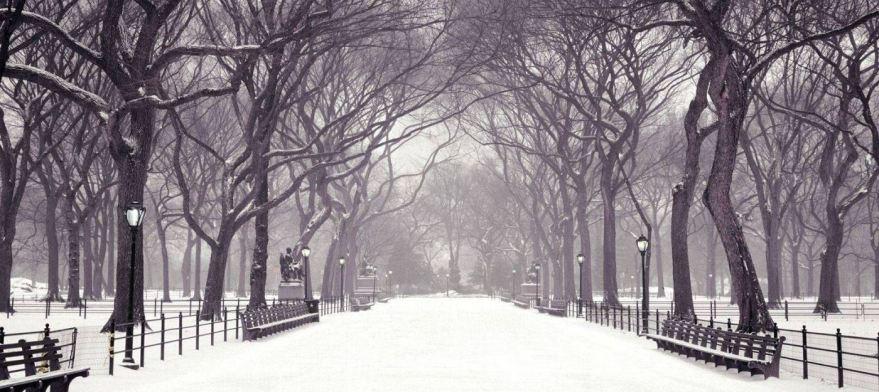 Central Park, Nova Iorque.jpg