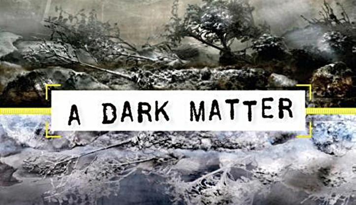 A Dark Matter, de Peter Straub.jpg