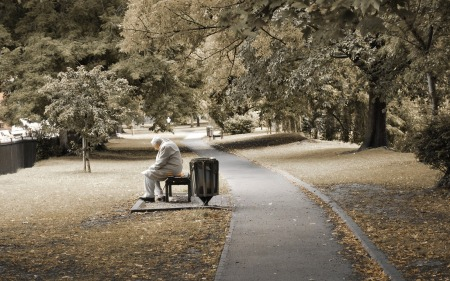 old-man-hd-wallpaper-in-a-park